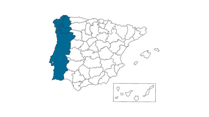 contact person, sales, profile and map, Miguel Misa, ES